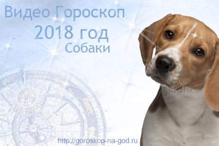 видео прогноз на 2018 год