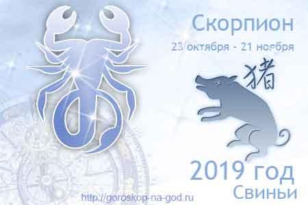 Скорпион 2019 год